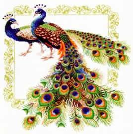 Скачать схемы для вышивки крестом бесплатно птицы